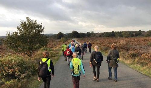 Avond ZorgSaam in Beweging | Wandelen | Hardlopen | Fietsen